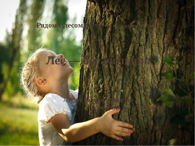 Рядом с лесом жить— голодному не быть. Лес— богаче царя. Лес не только волк...