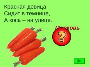 Красная девица Сидит в темнице, А коса – на улице. Морковь