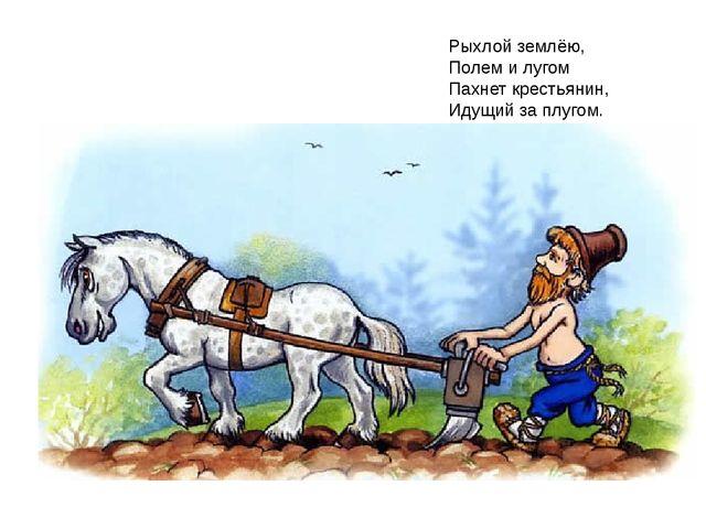 Рыхлой землёю, Полем и лугом Пахнет крестьянин, Идущий за плугом.