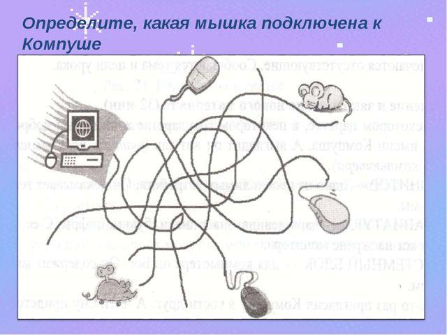 Определите, какая мышка подключена к Компуше