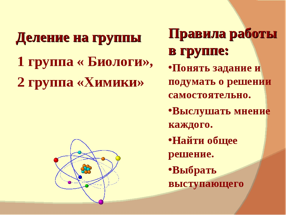 Деление на группы 1 группа « Биологи», 2 группа «Химики» Правила работы в гр...