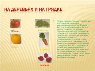 Ягоды, фрукты, овощи – основные источники витаминов и минеральных веществ. По