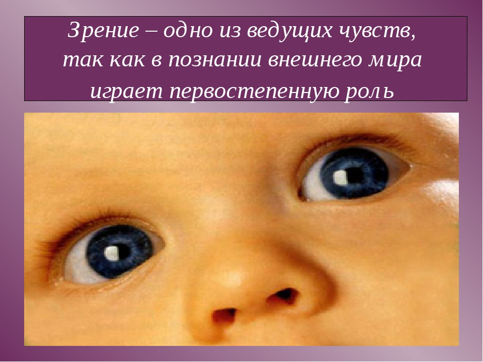 Зрение – одно из ведущих чувств, так как в познании внешнего мира играет перв...