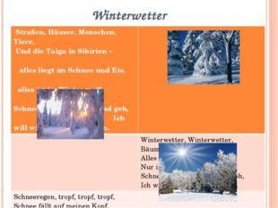 Winterwetter Straßen, Häuser, Menschen, Tiere, Und die Taiga in Sibirien – al