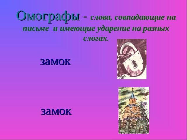Омографы - слова, совпадающие на письме и имеющие ударение на разных слогах....