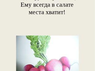 Весенний овощ в ранний срок, Всегда хрустя, розовощёк, Ему всегда в салате ме
