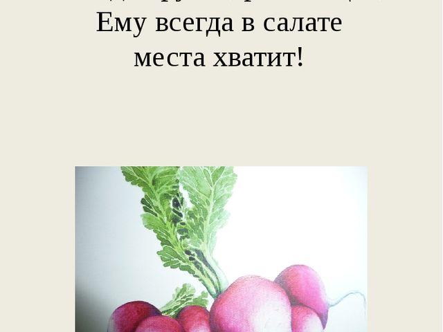 Весенний овощ в ранний срок, Всегда хрустя, розовощёк, Ему всегда в салате ме...