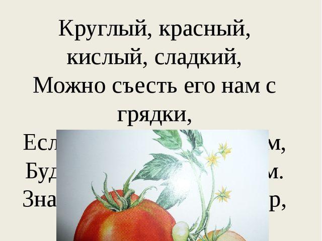 Круглый, красный, кислый, сладкий, Можно съесть его нам с грядки, Если же сор...