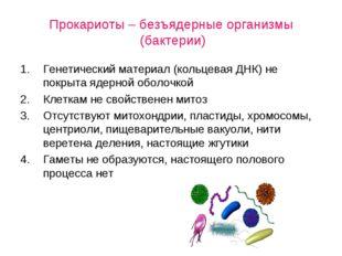 Прокариоты – безъядерные организмы (бактерии) Генетический материал (кольцев