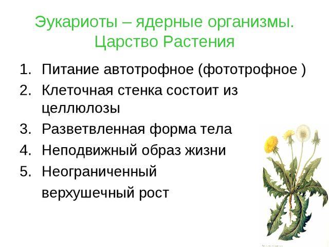 Эукариоты – ядерные организмы. Царство Растения Питание автотрофное (фототроф...