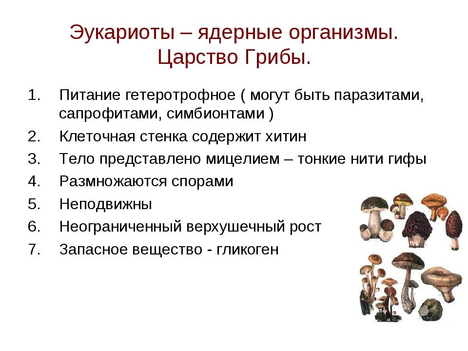 Эукариоты – ядерные организмы. Царство Грибы. Питание гетеротрофное ( могут б...