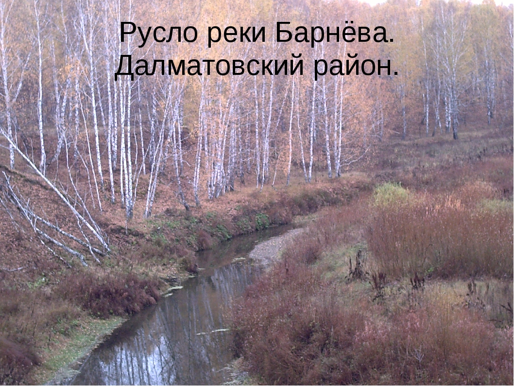 Русло реки Барнёва. Далматовский район.