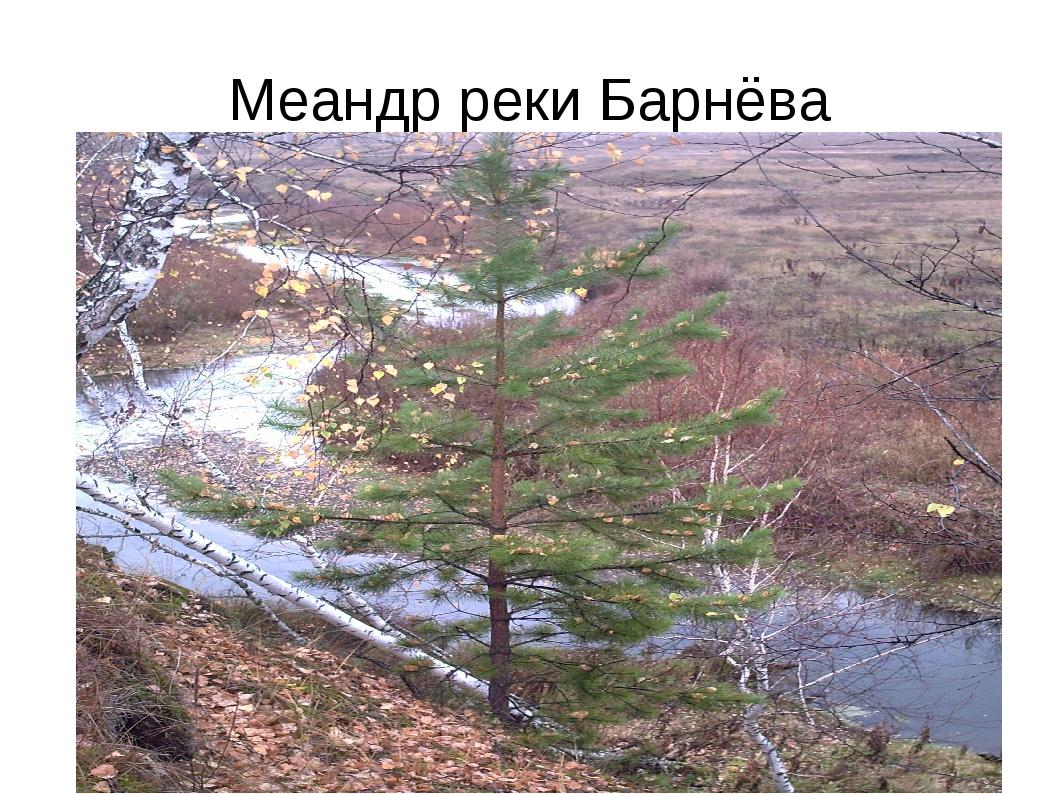 Меандр реки Барнёва