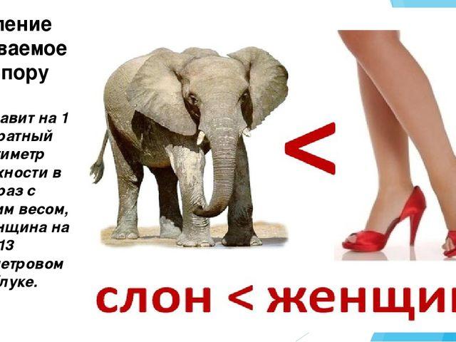 Слон давит на 1 квадратный сантиметр поверхности в 25 раз с меньшим весом, че...
