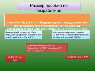 Закон ПМР № 224-З-V «О бюджете единого государственного фонда социального ст