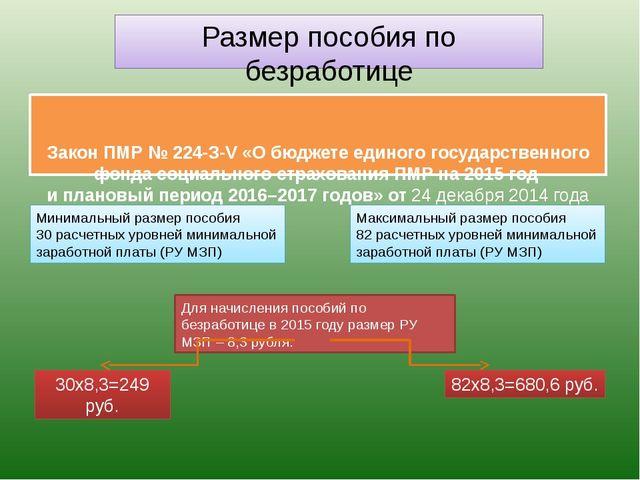 Закон ПМР № 224-З-V «О бюджете единого государственного фонда социального ст...