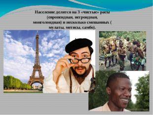 Население делится на 3 «чистые» расы (европеидная, негроидная, монголоидная)