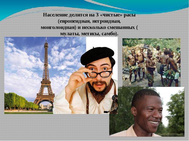 Население делится на 3 «чистые» расы (европеидная, негроидная, монголоидная)...
