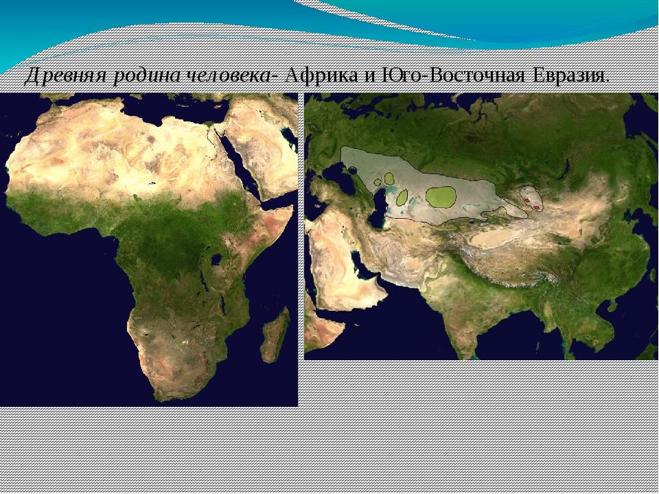 Древняя родина человека- Африка и Юго-Восточная Евразия.