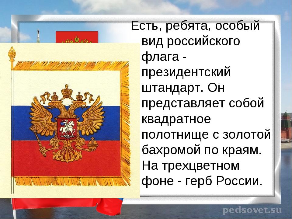 Есть, ребята, особый вид российского флага - президентский штандарт. Он предс...