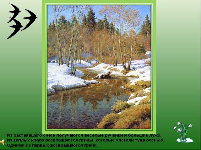 Из растаявшего снега получаются веселые ручейки и большие лужи. Из теплых кра...