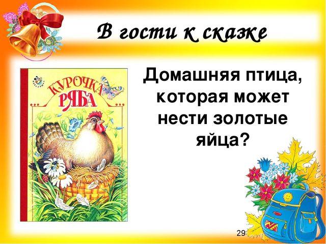 ? В гости к сказке Домашняя птица, которая может нести золотые яйца?