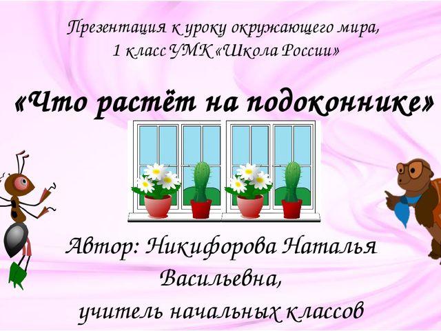 . ГИППЕАСТРУМ Родина этого растения – Америка. В переводе название цветка оз...