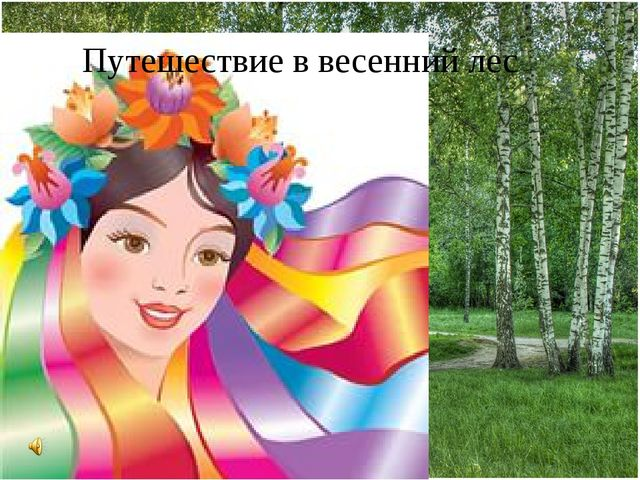 Путешествие в весенний лес