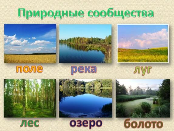 hello_html_m10f0a133.jpg