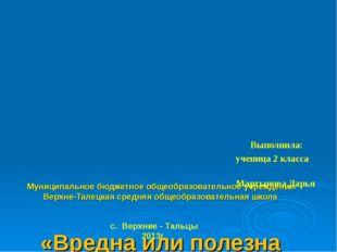 Муниципальное бюджетное общеобразовательное учреждение Верхне-Талецкая средн