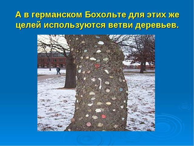 А в германском Бохольте для этих же целей используются ветви деревьев.