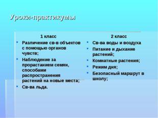 Уроки-практикумы 1 класс Различение св-в объектов с помощью органов чувств; Н