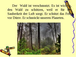 Der Wald ist verschmutzt. Es ist wichtig, den Wald zu schützen, weil er für