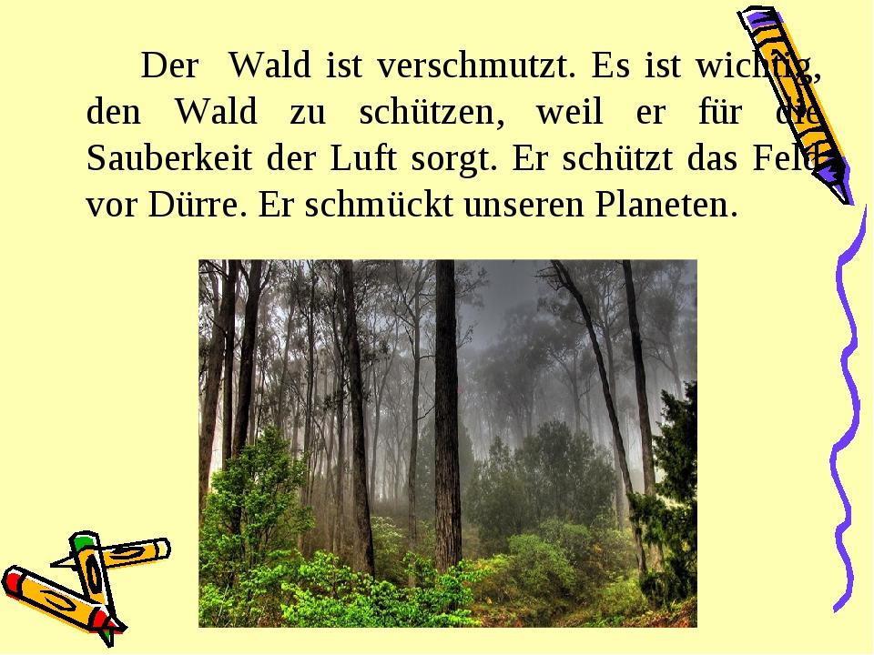 Der Wald ist verschmutzt. Es ist wichtig, den Wald zu schützen, weil er für...