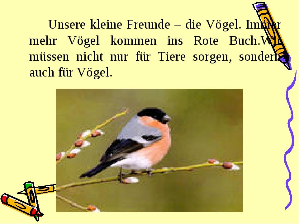 Unsere kleine Freunde – die Vögel. Immer mehr Vögel kommen ins Rote Buch.Wi...