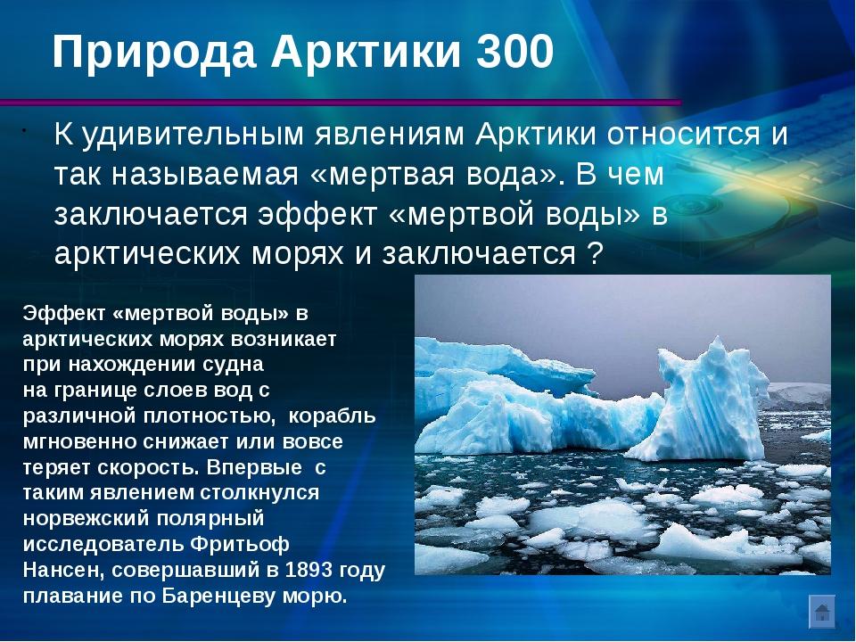 Арктический туризм Арктика – это огромная и экологически чистая территория. Т...
