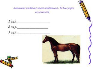Запишите название этого животного , во всех трех склонениях 1 скл.__________