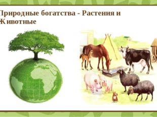 Природные богатства - Растения и Животные