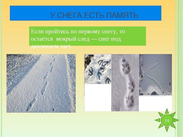 Если пройтись по первому снегу, то остаётся мокрый след — снег под давлением...