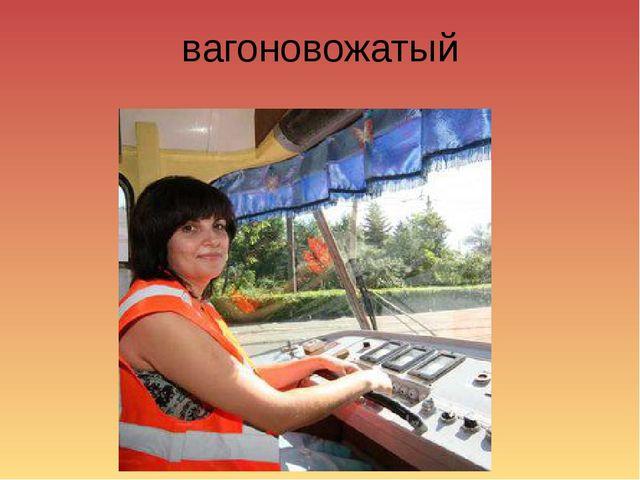 вагоновожатый
