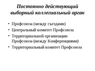 Постоянно действующий выборный коллегиальный орган Профсоюза (между съездами)