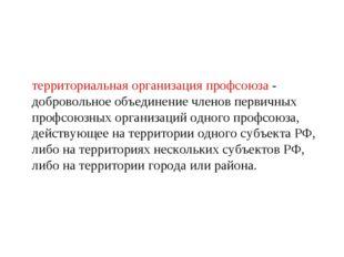 территориальная организация профсоюза - добровольное объединение членов перви