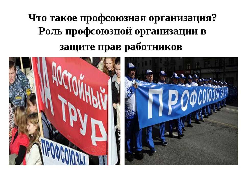Что такое профсоюзная организация? Роль профсоюзной организации в защите прав...