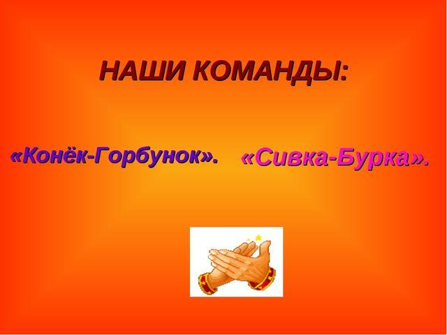 НАШИ КОМАНДЫ: «Конёк-Горбунок». «Сивка-Бурка».