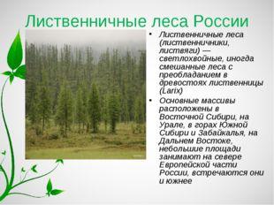 Лиственничные леса России Лиственничные леса (лиственничники, листвяги) — све