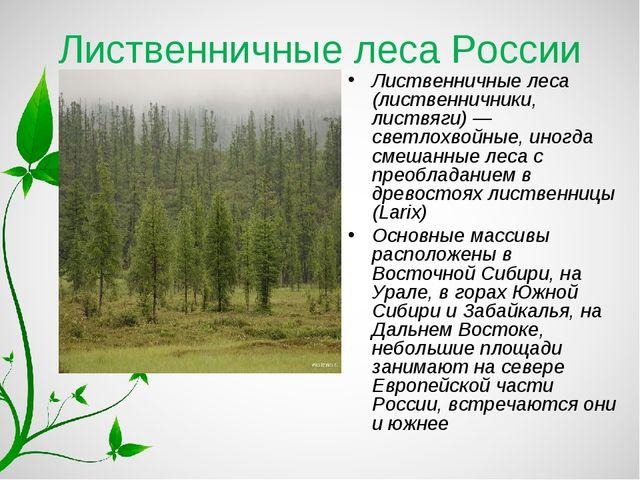 Лиственничные леса России Лиственничные леса (лиственничники, листвяги) — све...