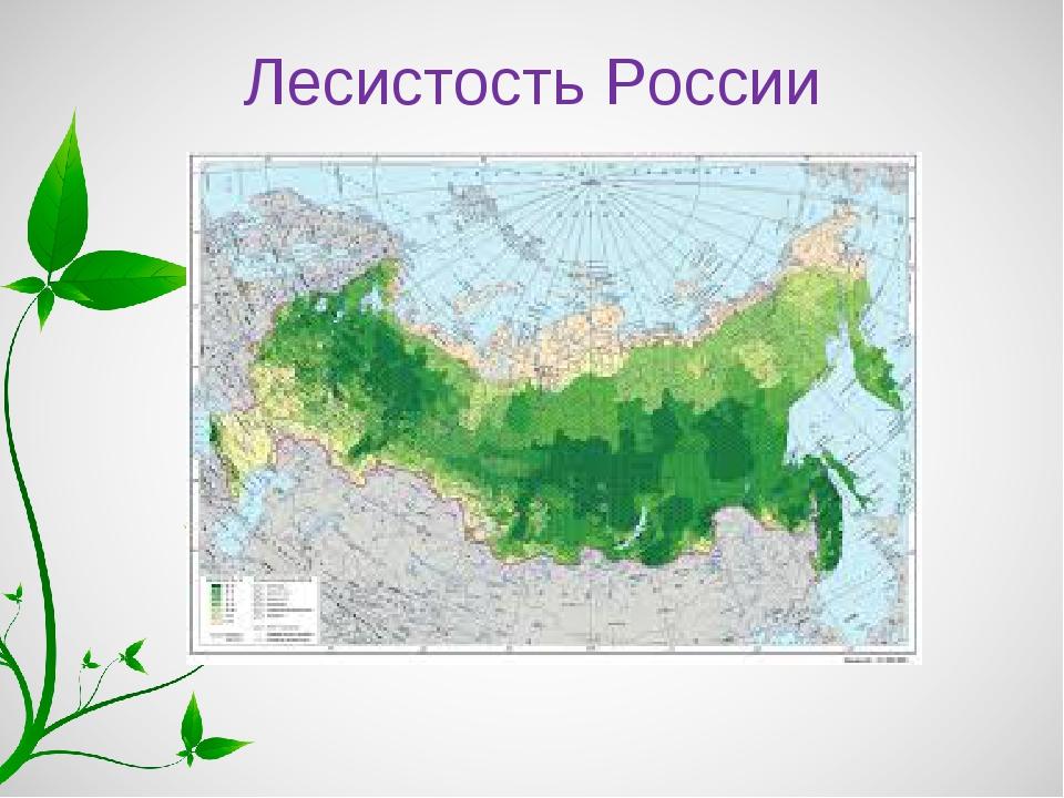 Лесистость России