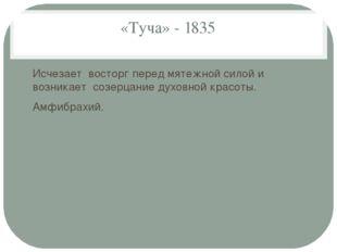 «Туча» - 1835 Исчезает восторг перед мятежной силой и возникает созерцание ду