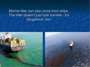 Marine litter can also come from ships. This litter doesn't just look horribl