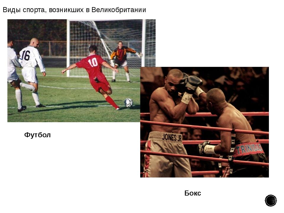 Виды спорта, возникших в Великобритании Футбол Бокс